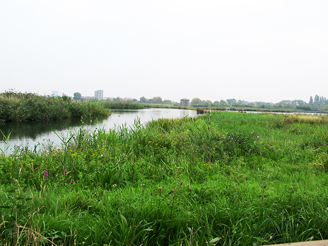 서쪽 route의 hide에서본 습지, source: Caroline Ham